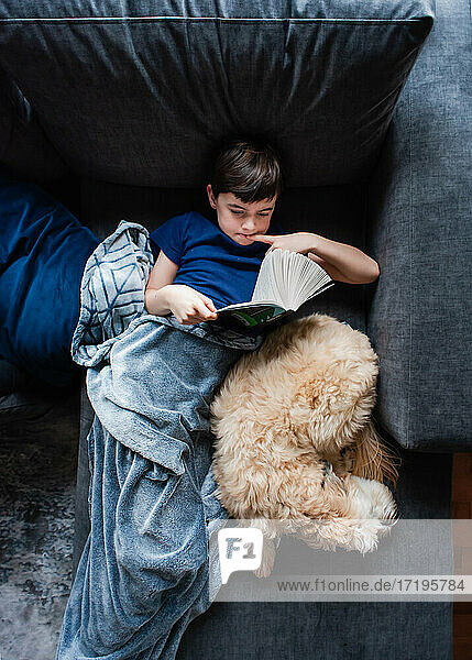 Overhead image of boy reading a book on couch with dog beside him.