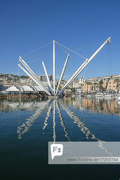 Italy  Liguria  Genoa  Crane in Marina di Porto Antico