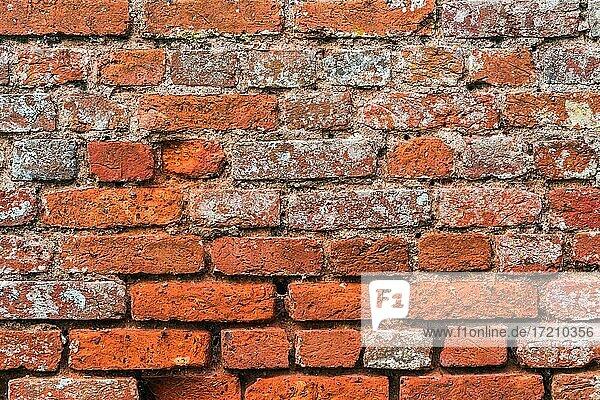 Alte Backsteinmauer  Burgmauer in England