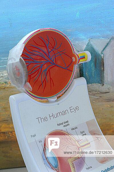 Ophthalmologische Praxis Ophthalmologische Praxis