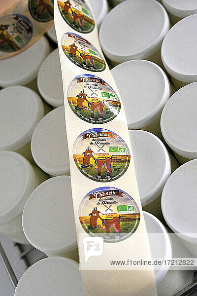 Goat breeding and production of organic product from goat milk