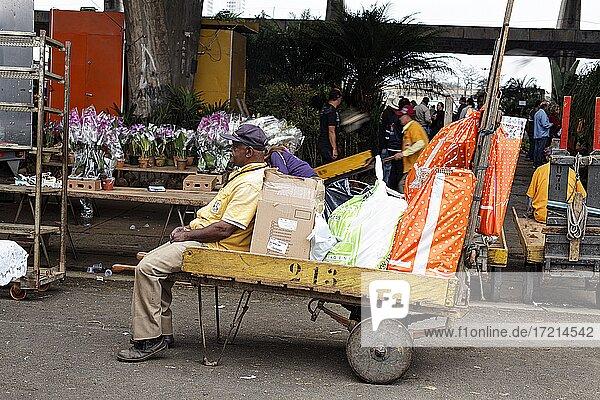 Sao Paulo  CEAGESP  oeffentlicher Markt