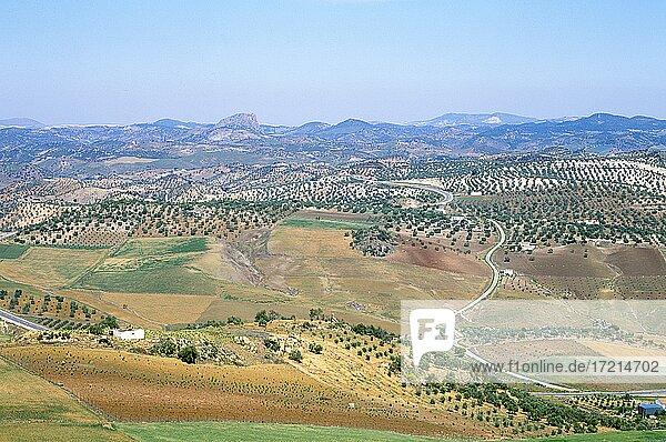 Spanien  Andalusien  Landschaft  Spain  Andalusia  landscape