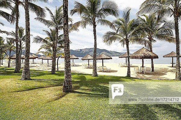 Landschaft  Angra dos Reis  Rio de Janeiro  Strand mit Kokospalmen | Landscape  Angra dos Reis  Rio de Janeiro  Beach with coconut palm