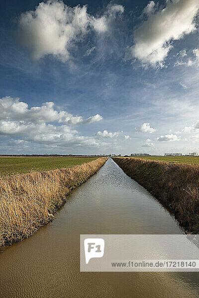 Schnurgerader  scheinbar endlos langer Entwässerungsgraben ( Wettern ) unter Frühlingshimmel in der Wilstermarsch