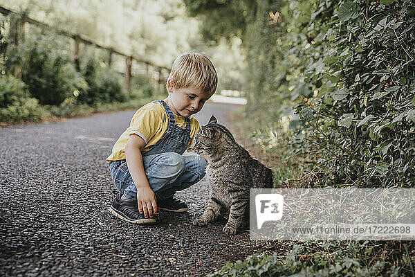 Blond boy playing with cat on road
