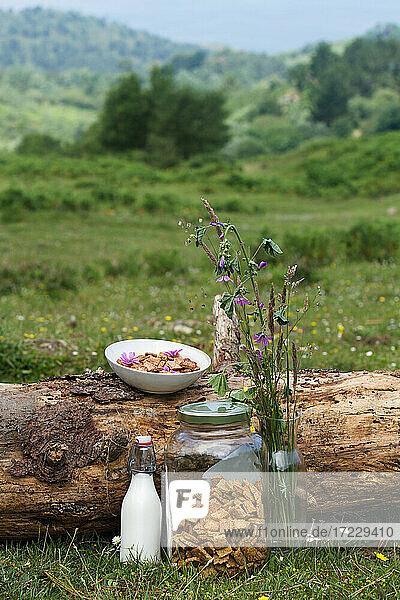 Schüssel mit Zimt-Cornflakes und Milchflasche auf Baumstamm