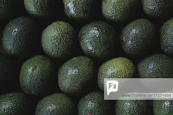Hochwinkel-Nahaufnahme von frisch gepflückten Avocados.