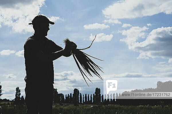 Ein Bauer steht auf einem Feld und hält frisch gepflückte Frühlingszwiebeln.
