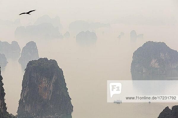 Luftaufnahme über die neblige Ha Long Bucht und hohe Felssäulen