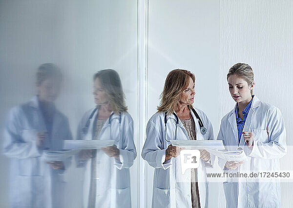 Female doctors discussing over documents in hospital