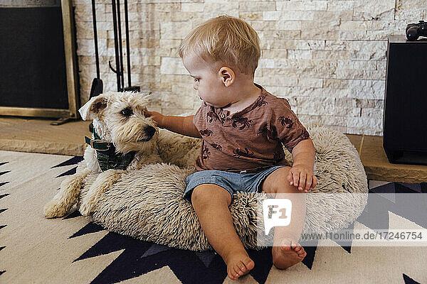 Ein kleiner Junge streichelt einen Hund  während er zu Hause auf einem Bett für Haustiere sitzt