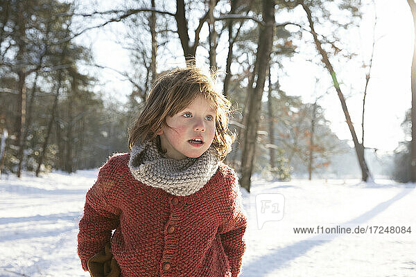 Curious boy in warm clothing looking away during winter