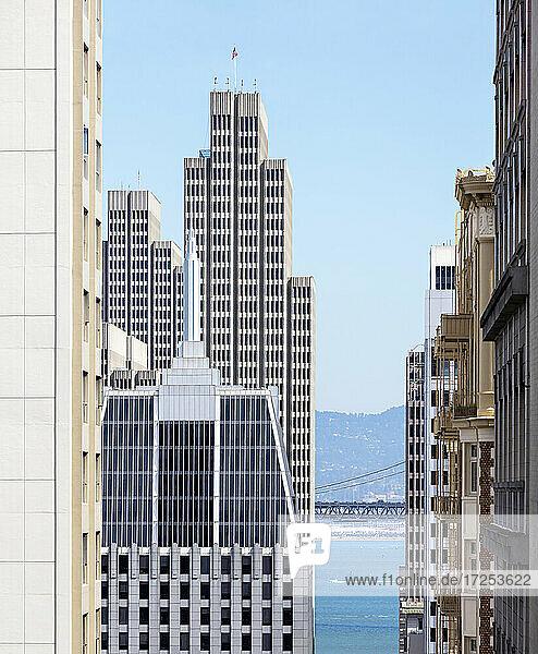 USA  California  San Francisco  Downtown skyscrapers