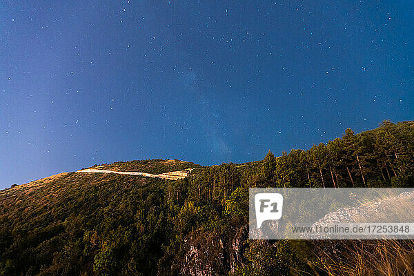 Low angle view of starry sky over tree covered mountain  Canyon Matka  Skopje  North Macedonia