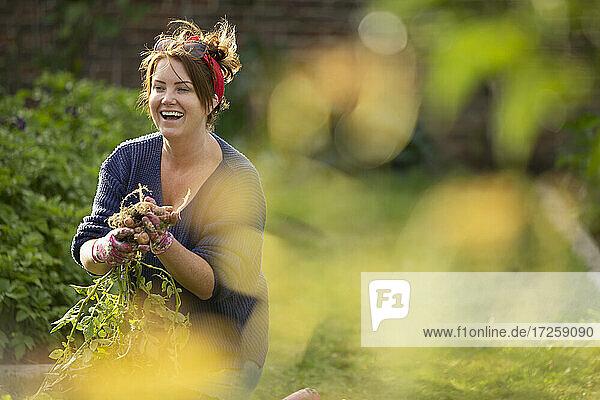 Happy woman harvesting fresh vegetables in backyard garden