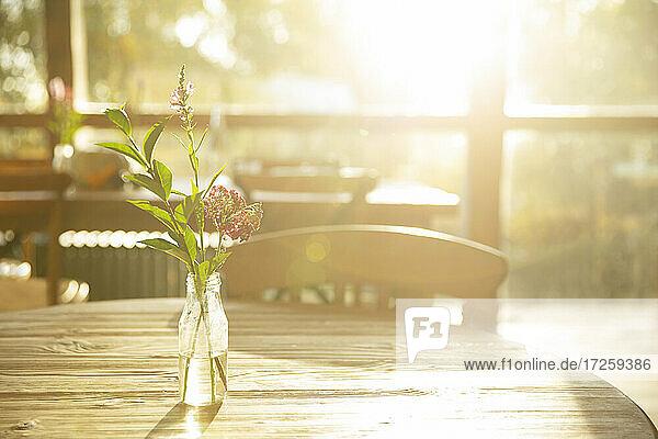 Einfacher Wildblumenstrauß im Glasgefäß auf sonnigem Cafétisch