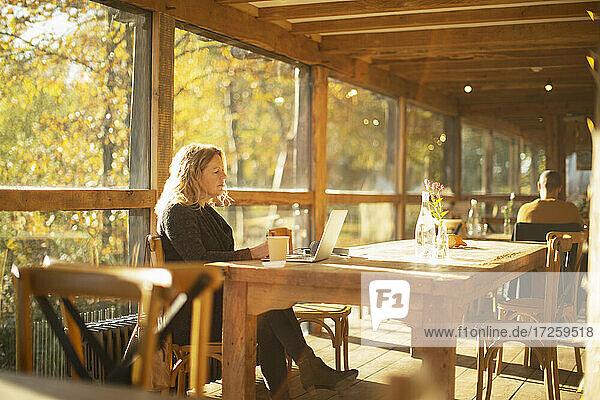 Businesswoman working at laptop in sunny autumn restaurant