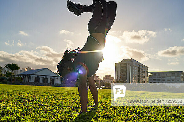 Athletic young man doing handstand in sunny park grass