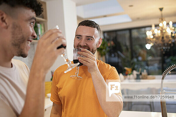 Happy gay male couple drinking red wine in kitchen