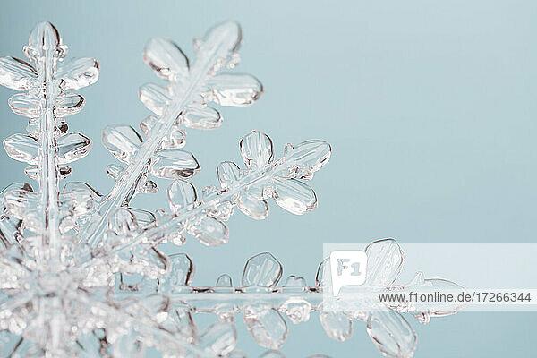 Nahaufnahme einer Schneeflocke auf hellblauem Hintergrund