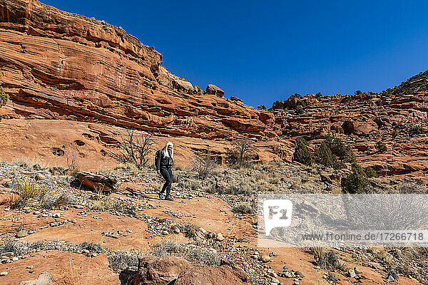 USA  Utah  Escalante  Frau wandert im Grand Staircase-Escalante National Monument