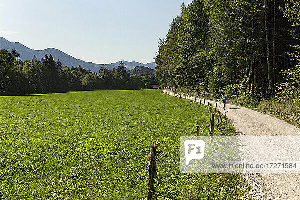 Dirt road stretching along empty pasture in summer