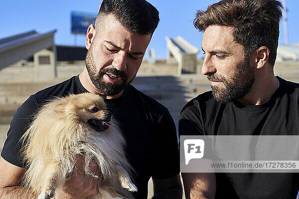 Gay couple with dog spending leisure time during weekend