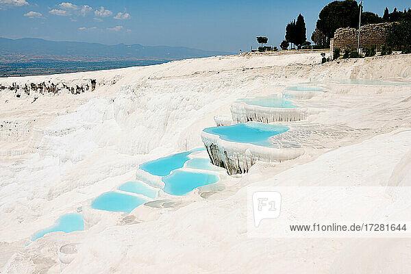 Rotfuchs (Vulpes vulpes)  zwei Fuchs-Welpen vor ihrem Bau  Heinsberg  Nordrhein-Westfalen  Deutschland |red fox (Vulpes vulpes)  two fox pups in front of their den  Heinsberg  North Rhine-Westphalia  Germany|