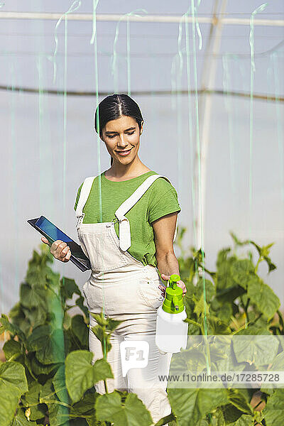 Young female farmer with digital tablet spraying water on crops at greenhouse