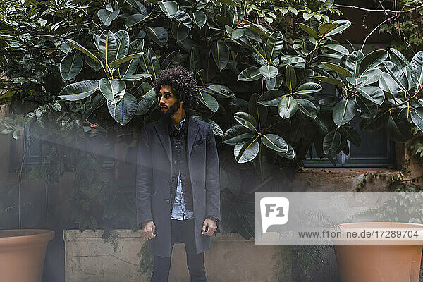 Fashionable young man looking away while standing in front of plants