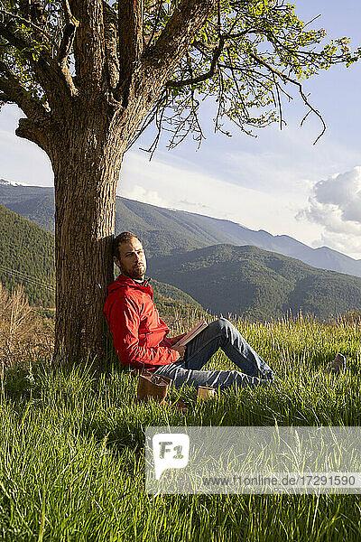 Mann mit Buch entspannt unter einem Baum auf einem Berg