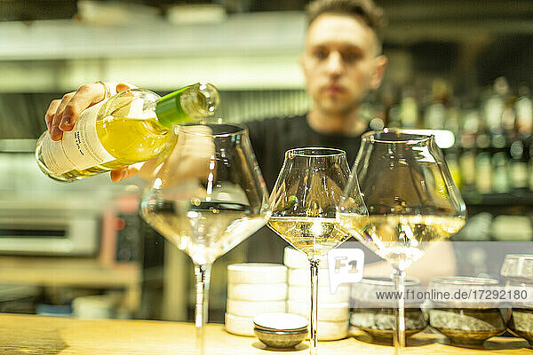 Male bartender pouring white wine in glasses at bar