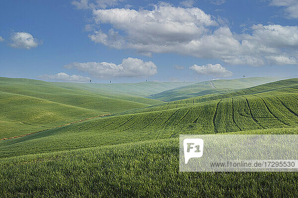 Italien  Toskana  Val D'Orcia  Pienza  Wolken über grünen Hügeln