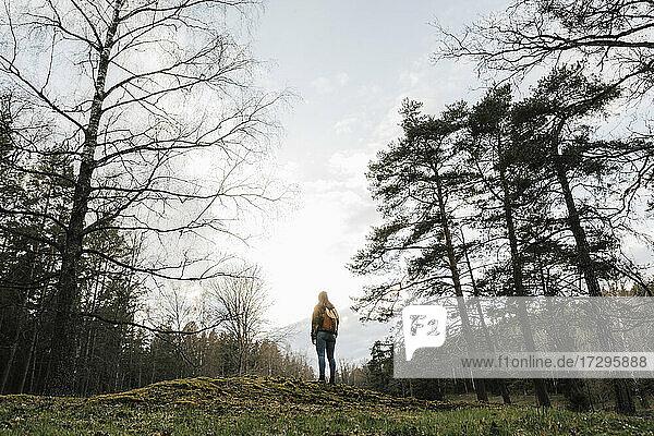Rückansicht eines weiblichen Forschers mit Blick auf die Aussicht bei der Erkundung des Waldes im Urlaub