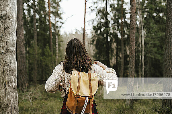 Rear view of woman exploring in forest during vacation