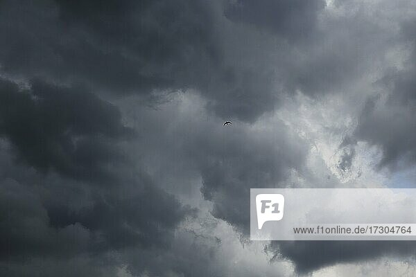 Storm clouds  Province of Quebec  Canada  North America