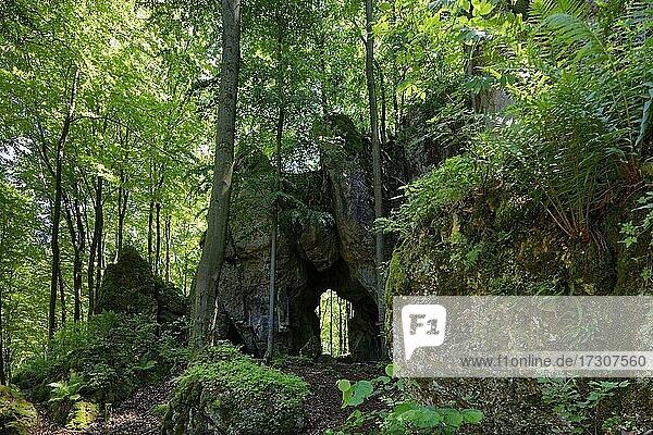 Felsentor Geißkirche  Durchgangshöhle  mystisch  Weiler Türkelstein  Ortsteil von Gößweinstein  Oberfranken  Franken  Bayern  Deutschland  Europa