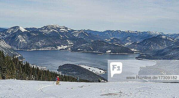 Junge Frau auf Skitour  Abfahrt vom Simetsberg  Blick auf den Walchensee  Estergebirge  Bayerische Voralpen  Bayern  Deutschland  Europa