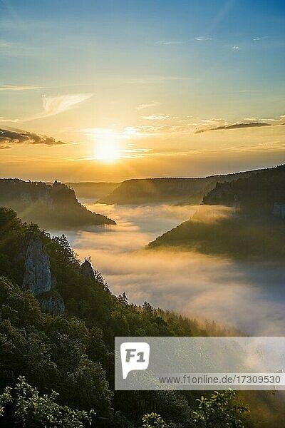 Ausblick vom Eichfelsen auf Schloss Werenwag mit Morgennebel  Sonnenaufgang  bei Irndorf  Naturpark Obere Donau  Oberes Donautal  Donau  Schwäbische Alb  Baden-Württemberg  Deutschland  Europa
