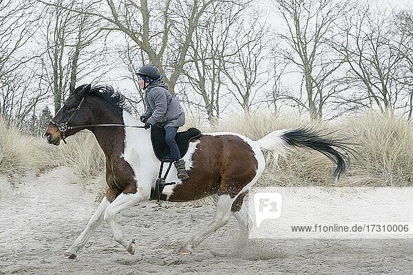 Mädchen reitet galoppierendes Pferd in Sand