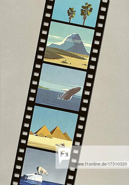 Naturreisebilder auf Kamerafilm