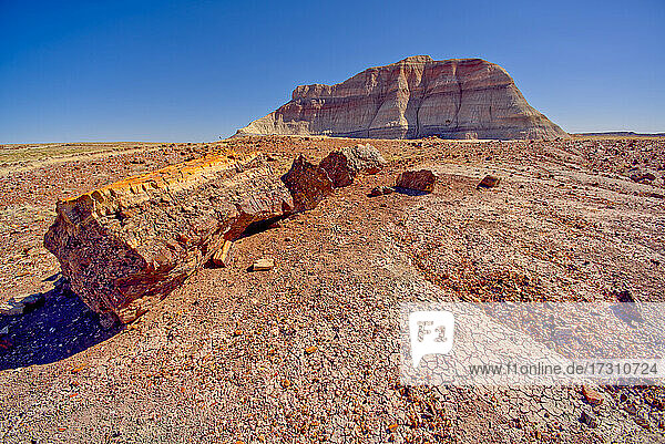 A Bentonite formation in Petrified Forest National Park near Crystal Forest called the Battleship  Arizona  United States of America  North America