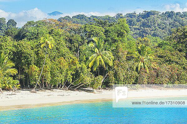 Tropical beach  Manuel Antonio National Park  Quepos  Costa Rica  Central America