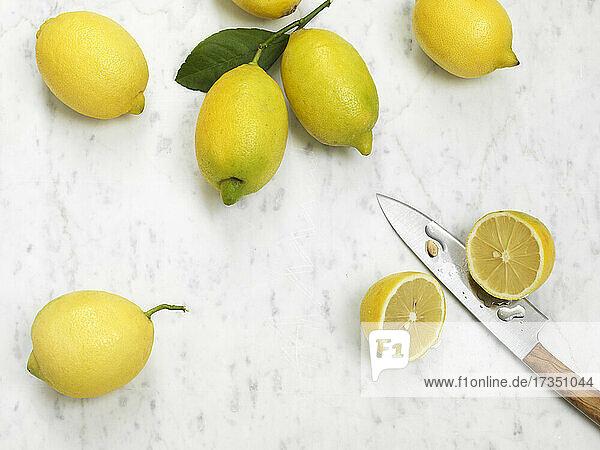 Frische Amalfi-Zitronen
