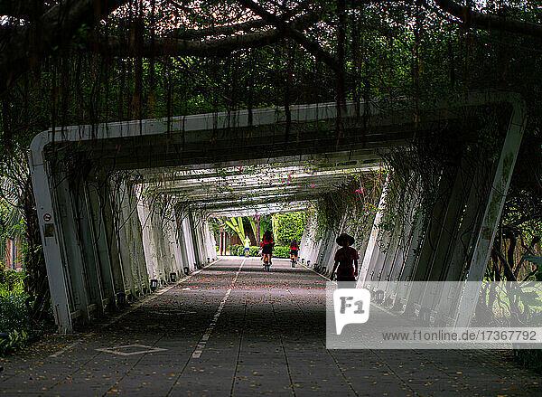 Männer und Frauen fahren Fahrrad und gehen unter einem Tunnel in Taiwan Männer und Frauen fahren Fahrrad und gehen unter einem Tunnel in Taiwan