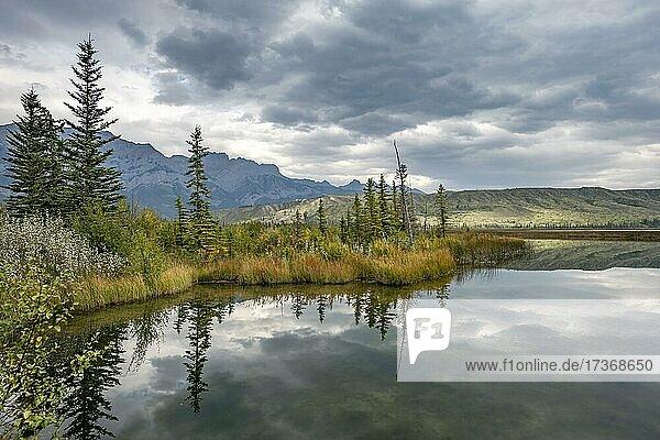 Hügelige Landschaft  Bäume spiegelt sich in einem See  im Herbst  Talbot Lake  Jasper National Park  British Columbia  Kanada  Nordamerika Hügelige Landschaft, Bäume spiegelt sich in einem See, im Herbst, Talbot Lake, Jasper National Park, British Columbia, Kanada, Nordamerika