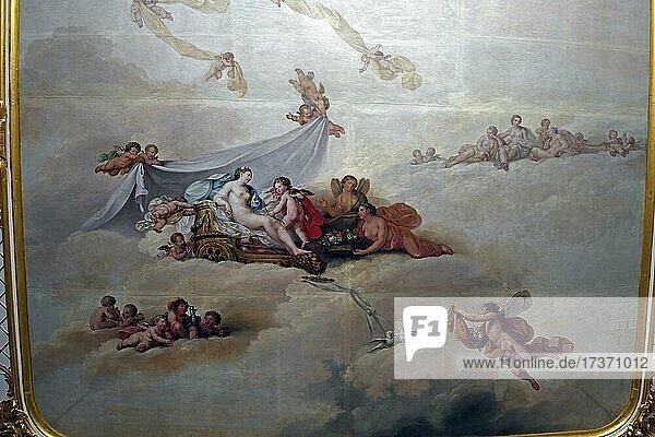 Ceiling Painting  Jasper Hall  New Chambers  Sanssouci Palace  Potsdam  Brandenburg  Germany  Europe