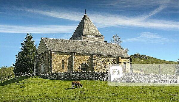Church of Saint-Alyre-ès-Montagne on Cezallier massif  Auvergne volcanoes regional natural park  Puy de Dome department  Auvergne-Rhone-Alpes  France  Europe