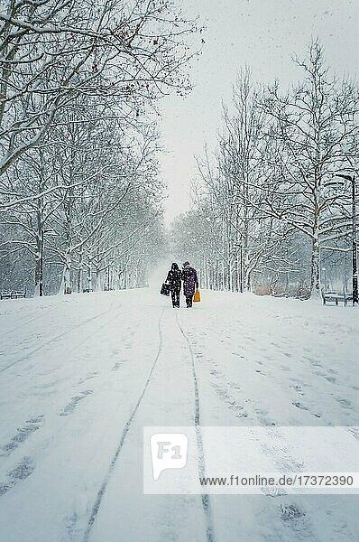 Zwei Frauen mittleren Alters  die Taschen tragen  gehen durch den Schneefall entlang der Gasse im Winterpark. Wunderschöne Schneeszene auf der Straße Schönheit der kalten Jahreszeit. Schneesturm auf dem Stadtplatz im Rosental  Chisinau  Moldawien  Europa Zwei Frauen mittleren Alters, die Taschen tragen, gehen durch den Schneefall entlang der Gasse im Winterpark. Wunderschöne Schneeszene auf der Straße Schönheit der kalten Jahreszeit. Schneesturm auf dem Stadtplatz im Rosental, Chisinau, Moldawien, Europa